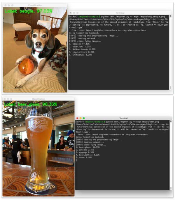 imagenet_example_header